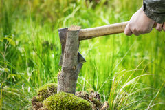 Lumberjack in forest with an ax Royalty Free Stock Photography