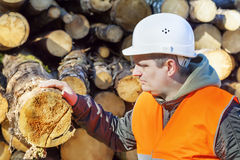 Lumberjack in forest. Near logs Royalty Free Stock Photography