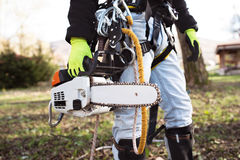 Lumberjack with harness and chain saw prepared to prune a tree. Unrecognizable lumberjack with harness and chainsaw prepared for pruning a tree. A tree surgeon Royalty Free Stock Photography