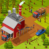 Lumberjack Isometric Composition Royalty Free Stock Image