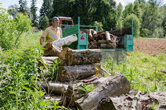 Lumberjack man load tree logs in tractor trailer Royalty Free Stock Photo
