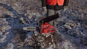 Lumberjack near chainsaw with old hand saw on stump in forest. In winter day stock video footage