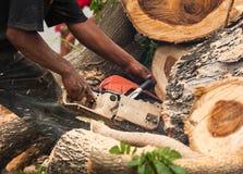 Lumberjack pracownik w pełnej ochronnej przekładni tnącej łupce Zdjęcie Stock
