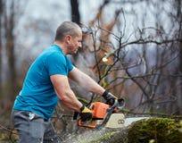 Lumberjack pracuje z piłą łańcuchową obrazy stock