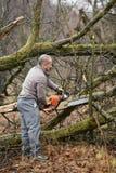 Lumberjack pracuje z piłą łańcuchową fotografia royalty free