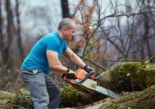 Lumberjack pracuje z piłą łańcuchową obrazy royalty free