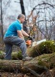 Lumberjack pracuje z piłą łańcuchową obraz royalty free
