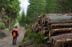 Lumberjack przy logpile Zdjęcie Stock