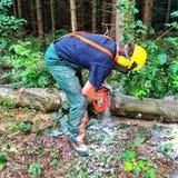 Lumberjack przy pracą Fotografia Royalty Free