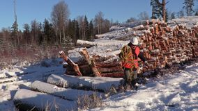 Lumberjack with rope across snow covered slope stock video