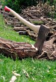 Lumberjack's Axe Stuck in a Tree Log on Grass Royalty Free Stock Photo