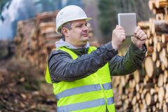 Lumberjack with tablet PC near piles of logs in forest Royalty Free Stock Photo
