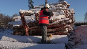 Lumberjack take pictures on phone near pile of logs in winter. Day stock video footage