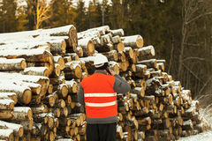 Lumberjack talking on the cell phone Royalty Free Stock Images