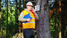 Lumberjack talking on cell phone near marked tree in forest stock footage