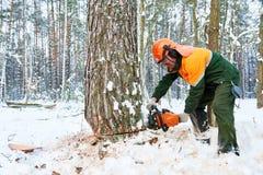 Lumberjack tnący drzewo w śnieżnym zima lesie Fotografia Stock