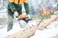 Lumberjack tnący drzewo w śnieżnym zima lesie Obrazy Stock
