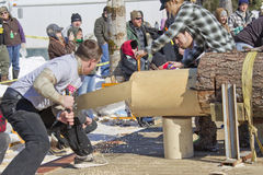 Lumberjack Two Man Bucksaw competition Halfway through Stock Image