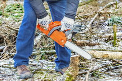 Lumberjack using chainsaw in forest Royalty Free Stock Photo