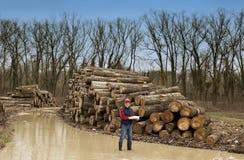 Lumberjack w lesie Zdjęcie Royalty Free