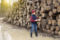 Lumberjack w lesie Fotografia Stock