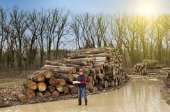 Lumberjack w lesie Obrazy Royalty Free