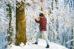 Lumberjack in the woods with an ax. Woodman working in the forest. Handsome man, hipster, lumberjack, axe. Brutal stock photography