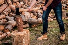 Lumberjack at work. Stock Images
