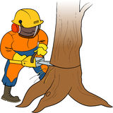 Lumberjack at work. Lumberjack sawing wood by chainsaw Royalty Free Stock Photography
