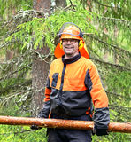 Lumberjack Worker carries, dragging log of special hooks. Northern Finland, Lapland Royalty Free Stock Photos