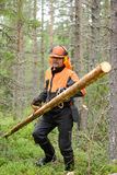 Lumberjack Worker carries felled logs special hooks Royalty Free Stock Images