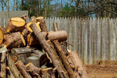 Lumberjack worker with chainsaw cutting log of wood Royalty Free Stock Photos