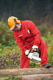 Lumberjack Worker With Chainsaw In The Forest. Lumberjack Worker in protective safety work wear With Chainsaw at Forest royalty free stock photo