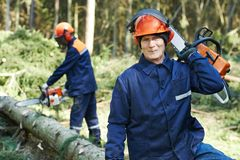 Lumberjack worker with chainsaw in the forest. Portrait of lumberjack logger worker in protective workwear with chainsaw at forest Stock Image