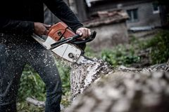 Lumberjack Worker In Full Protective Gear Cutting Firewood Stock Image