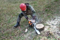 A lumberjack working with a chainsaw Royalty Free Stock Photos