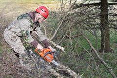 A lumberjack working with a chainsaw Royalty Free Stock Photo
