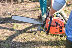 Lumberjack working with chainsaw, cutting wood Royalty Free Stock Photos