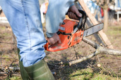 Lumberjack working with chainsaw, cutting wood Stock Photography