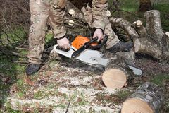 A lumberjack working with a chainsaw, safety Stock Photos