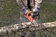 A lumberjack working with a chainsaw, safety Stock Images