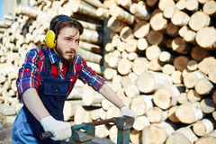 Lumberjack Working on Cutting Site Stock Photography