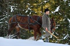 Lumberjacks с лошадью в лесе стоковые изображения
