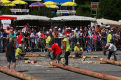 Lumberjacks' competition Royalty Free Stock Image