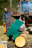Lumberjacks hauling logs royalty free stock photography
