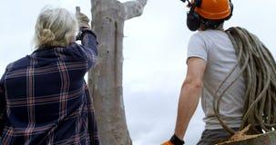 Lumberjacks oddziała wzajemnie z each inny przed tnącym drzewem 4k zbiory wideo