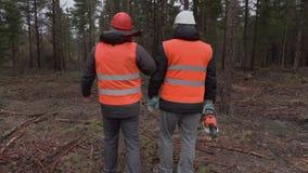 Lumberjacks opowiada w lesie zbiory wideo