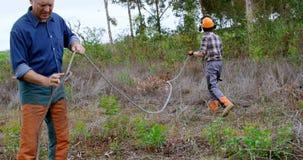 Lumberjacks pracuje w lesie 4k zdjęcie wideo