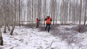 Lumberjacks w brzoza gaju przy gałąź zbiory
