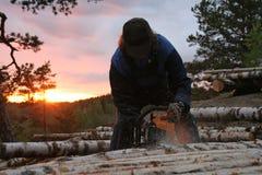 lumberman Στοκ φωτογραφίες με δικαίωμα ελεύθερης χρήσης